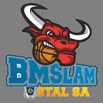 Intermarche Bricomarche BM SlamStal Ostrów