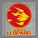 Shenzhen Leopards