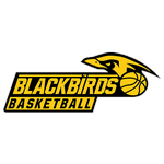 Jennersdorf Blackbirds