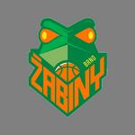 BK Basket Žabiny Brno