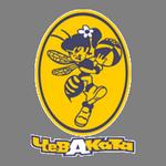 Chevakata Vologda