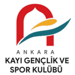 Ankara Kayı