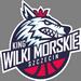 Wilki Morskie Szczecin