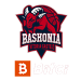 Saski Baskonia SAD