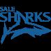 Sale Sharks