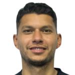 Alvino  Volpi Neto