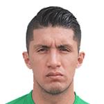 Ricardo Daniel  Farro Caballero