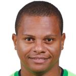Luiz Henrique  Da Silva Alves