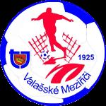 TJ Valašské Meziříčí