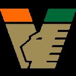 Venezia Football Club