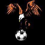 Lioli FC