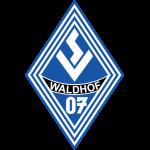 SV Waldhof Mannheim Under 19