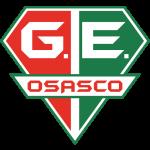 Grêmio Esportivo Osasco Under 19