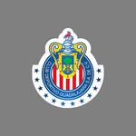 Guadalajara Under 20