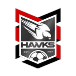 Holland Park Hawks