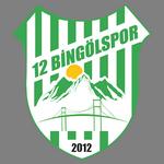 12 Bingöl Spor Kulübü