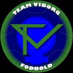 Team Viborg Fodbold