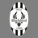 Jyväskylä Blackbird