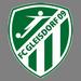 SC Gleisdorf 1919