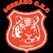 Prudentópolis FC