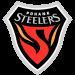Pohang Steelers FC