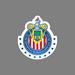 Guadalajara Under 17