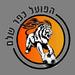 Hapoel Kfar Shalem FC