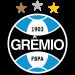 Grêmio FB Porto Alegrense