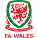 Wales Under 21