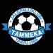 JK Tammeka Tartu II