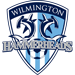 Wilmington Hammerheads