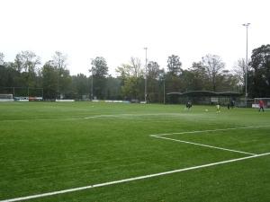 Sportpark Brasserskade (Concordia)
