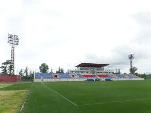 Stadioni Tengiz Burjanadze, Gori