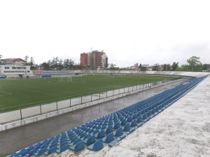 Chele Arena