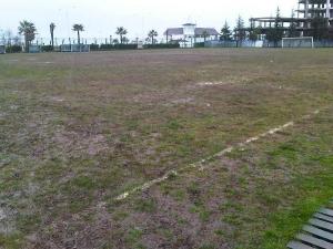 Adelis Stadioni, Batumi