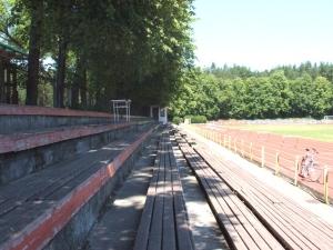 Vingio parko stadionas, Vilnius