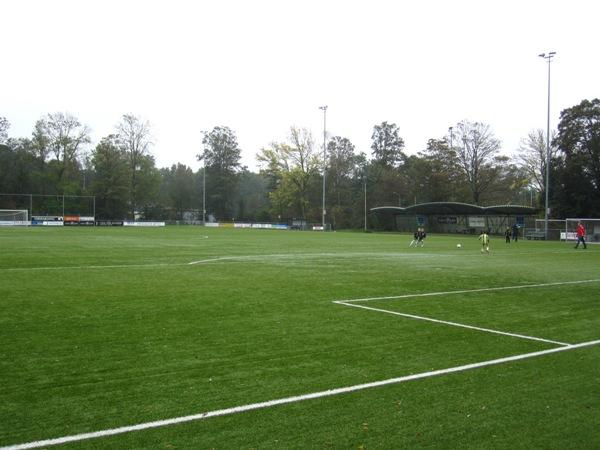 Sportpark Brasserskade (Concordia), Delft